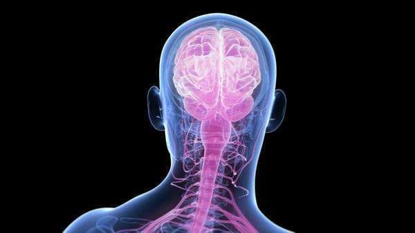 Naturopathic Continuing Education Tumors of the Central Nervous System Course